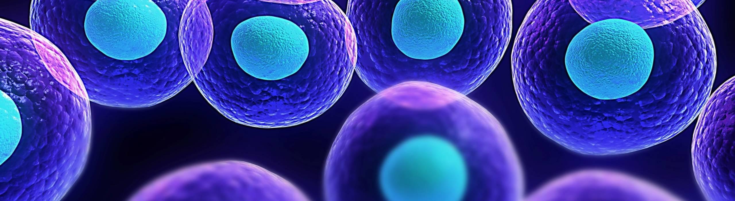 biology stock illustration